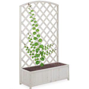 Celosía blanca para plantas
