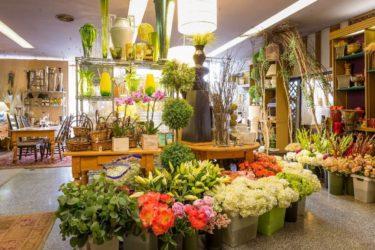 montar una floristería online