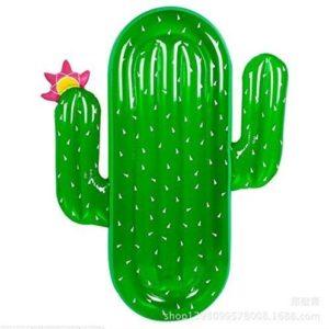 Colchoneta piscina cactus