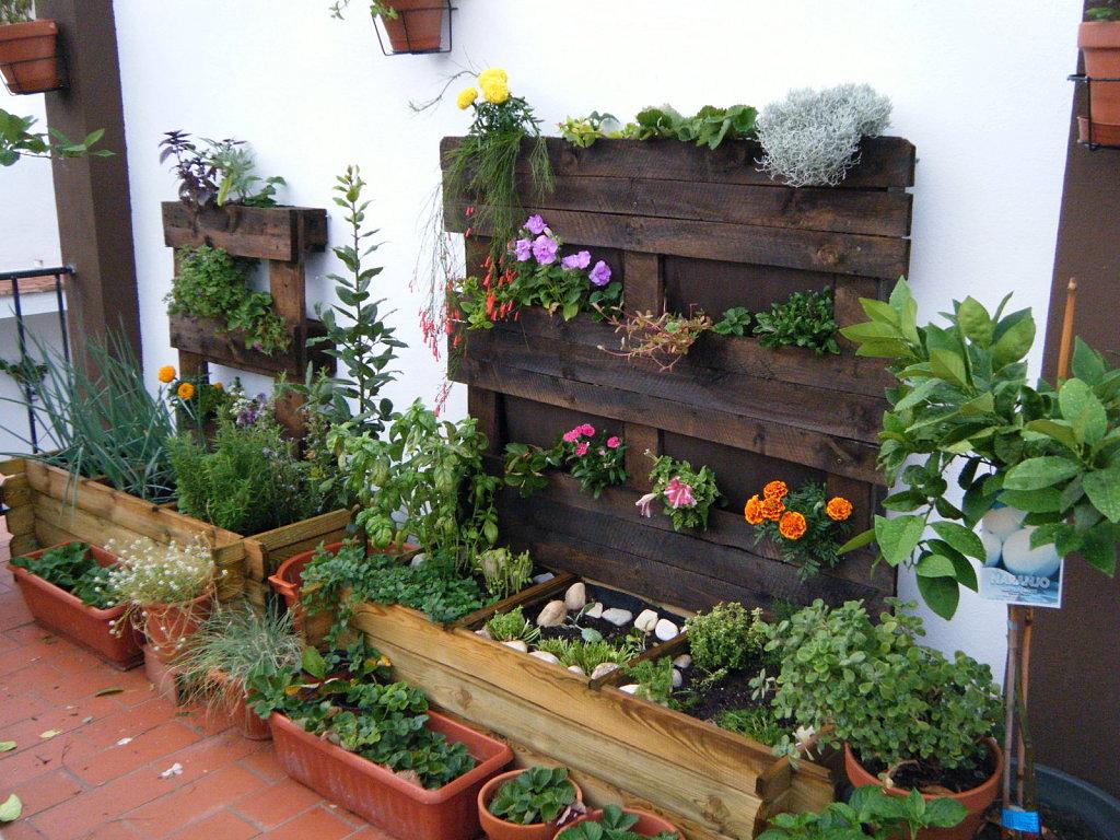 ¿Cómo comprar las mejores mesas de cultivo urbano al mejor precio?