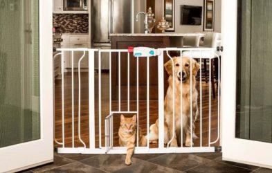 Vallas de seguridad para mascotas