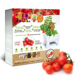 Kit de cultivo de tomates cherry