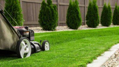 cursos de jardinería, hortofruticultura y paisajismo