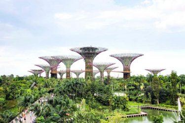 Los 8 mejores jardines verticales del mundo