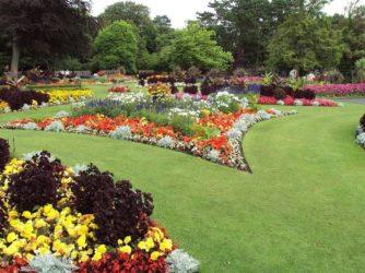 Reformar tu jardín